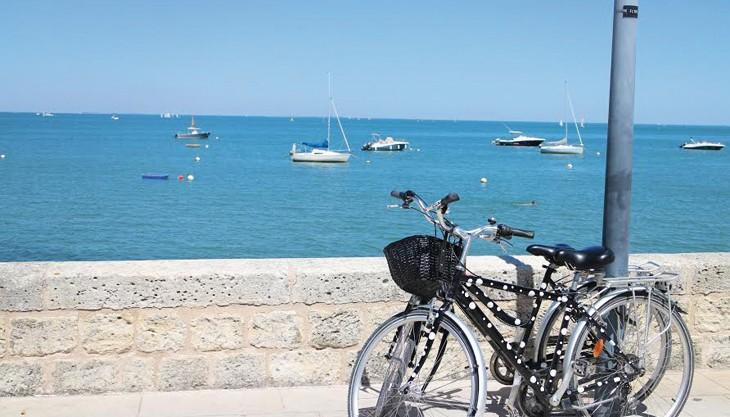 Location de vélo pour ballades en bord de mer