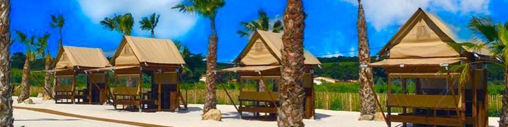 camping-soleil-d-oc-palmeraie-vu-exterieure-entete